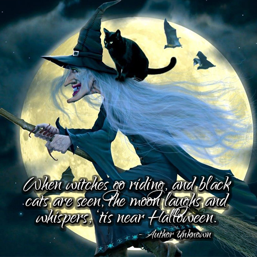 witch riding broom w/black cat